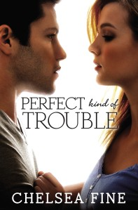 Fine_PerfectKindofTrouble_ebook